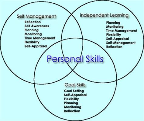 Resume With Knowledge Skills And Abilities Examples